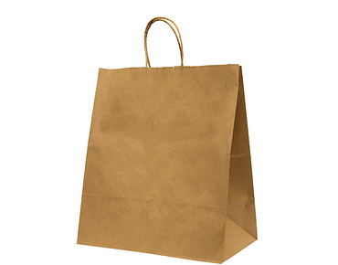 Home Meal Delivery Bag, Medium | Twisted Paper Handles